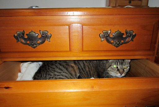 in drawer