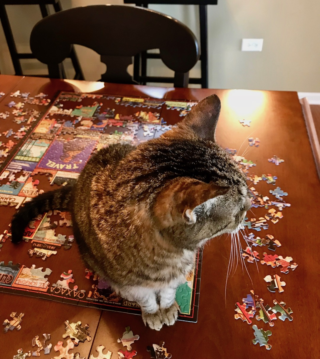 angiepuzzle